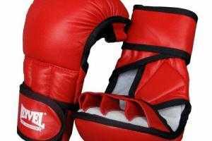 Спортивное снаряжение и экипировка для занятий смешанными единоборствами